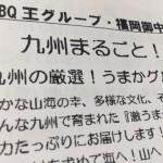image1_80.JPG